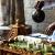 « D'Addis-Abeba à Istanbul : les cérémonies du café », avec Eloi Ficquet