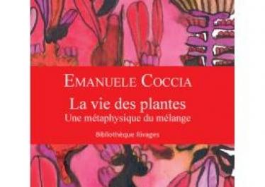 « Pourquoi s'inspirer de la vie des plantes ? », entretien avec Emanuele Coccia